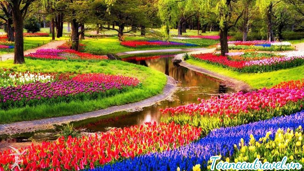 Vườn hoa Keukenhof chiêm ngưỡng những tuyệt tác của thiên nhiên với hàng nghìn loài hoa quý hiếm,