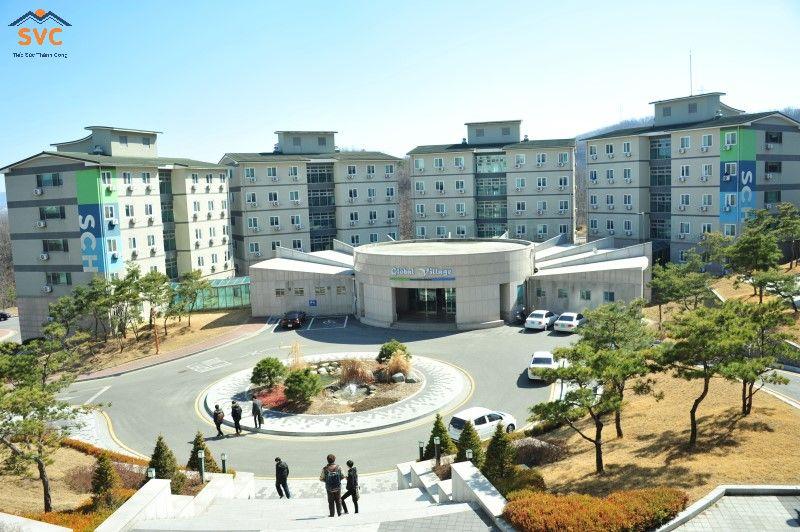 Chuyên ngành đào tạo – Đại học Soonchunhyang