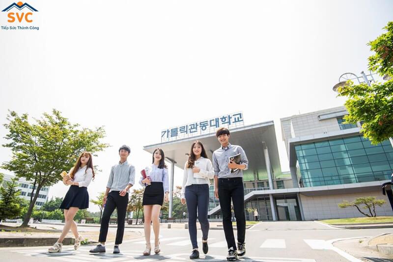 Tiêu chuẩn để làm thêm du học Hàn Quốc