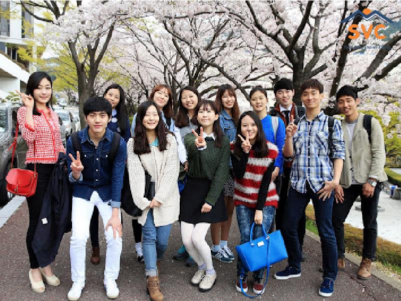 Chương trình đào tạo hệ cao đẳng tại Hàn Quốc