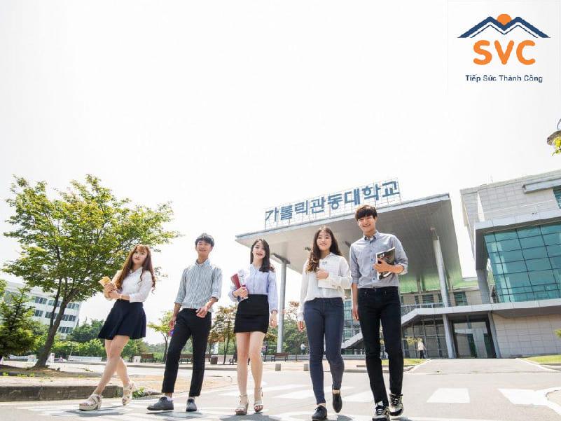 Cơ hội việc làm du học Hàn Quốc ngành kinh tế