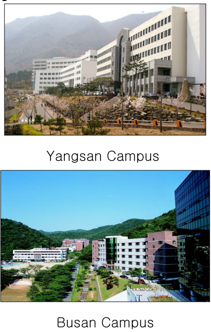 Các cơ sở Đại học Youngsan