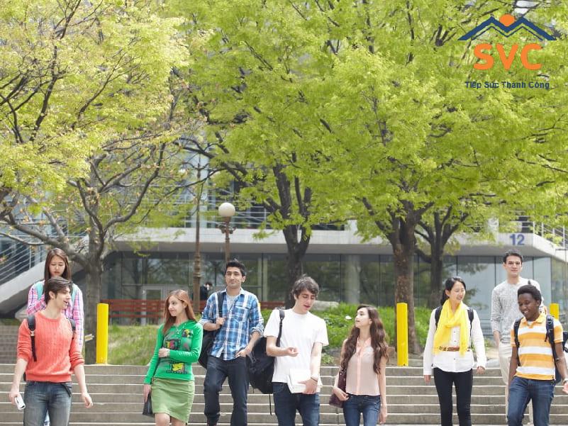 Độ tuổi du học Hàn Quốc tốt nhất