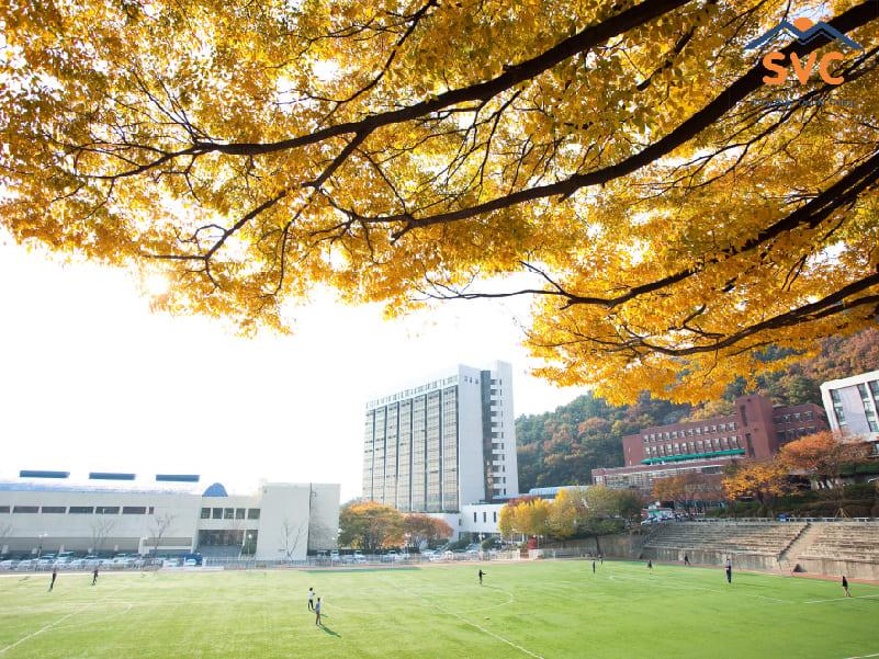 Lưu ý về các trường đại học ở Hàn Quốc có visa thẳng