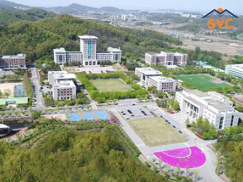 Thông tin trường Sunmoon