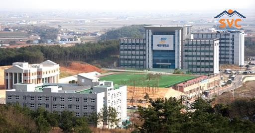 Ngôi trườngSehan University Hàn Quốc