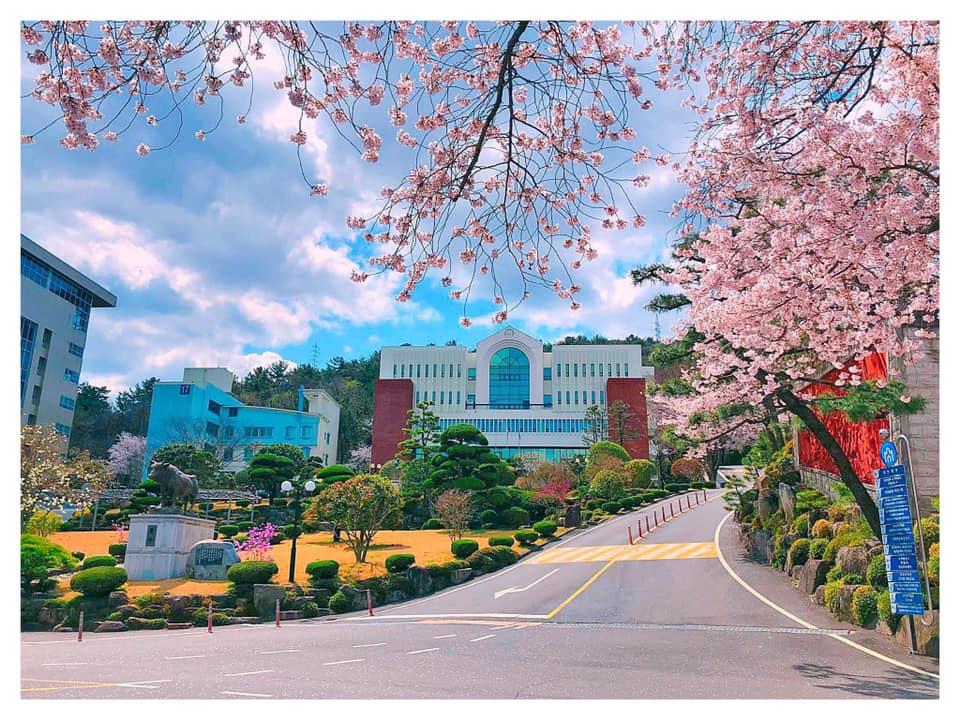 Một số thành tích nổi bật Đại học Masan