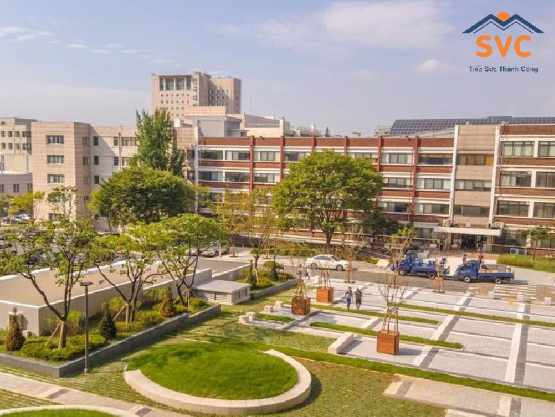 Trường top 1 Hàn Quốc