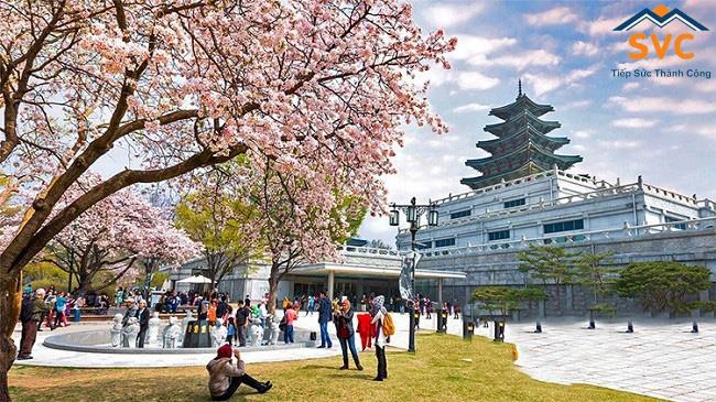 Từ khóa xung quanh Visa du học Hàn Quốc 2020 luôn được nhiều bạn trẻ quan tâm