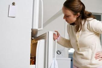 Tủ lạnh không lạnh do hỏng quạt cần sửa ngay